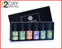 Essential Oils Top 6 Gift Set Pure Essential Oils for Diffuser, Humidifier, more