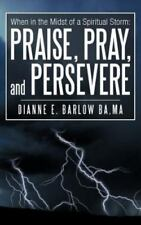 When in the Midst of a Spiritual Storm: Praise, Pray, and Persevere (Paperback o