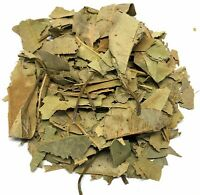 Mango Leaves Herbal Infusion Tea - Value Pack