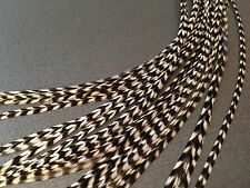 10 Hair Feathers, Feather Hair Extensions Black White Striped B/W GRIZ