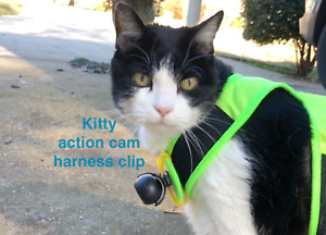 Cat Camera ONLY. The adjustable Kitty Cat Cam and clip for your cat harness