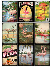 Pink Flamingo - Glossy Finish Card Toppers - Crafts Embellishment