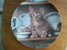 "Crestley Collection ""Teatime Tabby"" Picture Purrfect Cat Collector Plate"