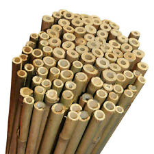 Bamboo Garden Canes Strong Thick 20mm Diameter Plant Support Canes  2ft -8ft
