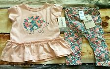 Carter's 6 Mo Pink Hedgehog Peplum Top Flowers Floral Leggings Outfit Set Nwt