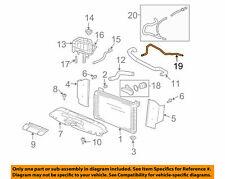 2007-2009 Cadillac Escalade Radiator Vent Hose New OEM 15020224