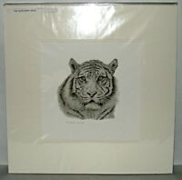 Neil Marsh - Tiger Pencil Drawing Limited Edition Print, 53/150. Signed 2007