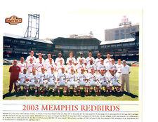 2003 MEMPHIS REDBIRDS TEAM  PHOTO BASEBALL ABBOTT RODRIGUEZ WIDGER