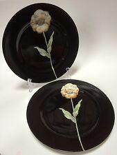 2 Fitz & Floyd Black Midnight Poppy Dinner Plates Yellow Flower