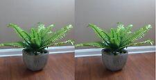 "Artificial Plants Fern Leaf Set of Two 24"" Boston Bushes"