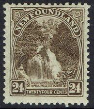 NEWFOUNDLAND 1923 PICTORIAL 24C