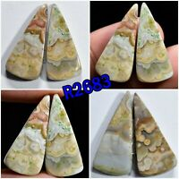 Multi Colour Crazy Lace Agate Flatback Cabochon Smooth Polished Healing Gemstone For Earrings Wholesale Price Loose Agate Stone R2753-R2756