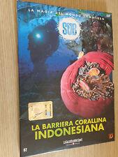 DVD N° 2 SUB EL MAGIA DE MUNDO SUMERGIDO BARRERA ARRECIFE CORAL INDONESIA