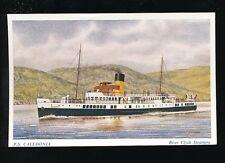 Shipping Clyde Steamer PS CALEDONIA artist J Nicholson c1930/40s? PPC