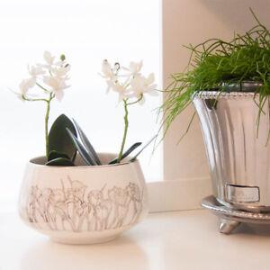 Lene Bjerre Luxury Crocus Bulb Bowl Planter. Spring Easter Size 10 x 16cm.