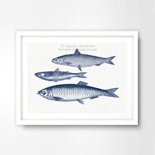 THREE FISHES ILLUSTRATION SEASIDE NAUTICAL ART PRINT Blue Decor Wall Picture