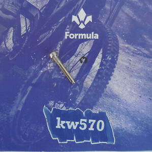 Formula - 1 Steel screw to fix brake pads Cura/Cura 4/Cura4 + seeger NEW