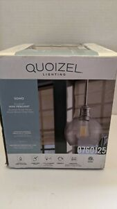 Quoizel Soho 6.8-in Brushed Nickel Industrial Mini Clear Glass Bowl Pendant READ