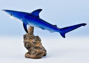 "Blue Shark Trophy 14""Stunning Fish Mount"
