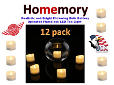 Homemory Realistic and Bright Flickering Bulb Battery Operated Flameless LED/12