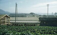 KODACHROME Red Border Slide Asia? Large Building Houses Bicycle Farm Crops 1950s