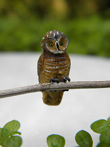 Buy 3 Save $5 Miniature Fairy Garden Two Owls on Stone