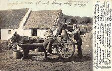BR81533 irish milk cart killarney types folklore donkey ireland