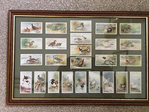 Art Deco PLAYER'S CIGARETTE CARDS 1930's  British Game birds Set of 25 Framed