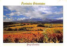 B50520 Ptrenees Orientales Le vignoble des aspres    france