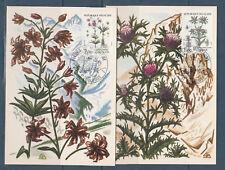 carte 1er jour   nature fleurs de montagne  31  Toulouse   1983