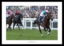 More details for frankel 2011 queen elizabeth ii stakes horse racing photo memorabilia (102)