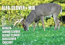 NEW ALFA-CLOVER+ MIX. ALFALFA CLOVERS CHICORY,Food Plot Seed, FAST FREE SHIPPING