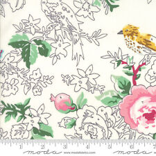 MODA Fabric ~ MEOW OR NEVER ~ Erin Michael (26111 14) Milk Pastel - by 1/2 yard