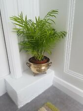 Vintage Brass Ornate Footed Planter Bucket