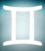 Autocollant sticker signe zodiaque astrologie gemini gemeaux blanc horoscope