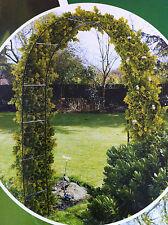 Black Metal Garden Arch Climbing Plants & Roses 240 x 136 x 38cm Great Value!