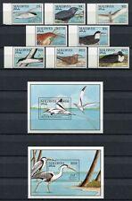 MALEDIVEN MALDIVE 1990 Vögel Birds Uccelli Oiseaux 1434-1441 + Block 170-171 **