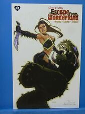 Escape From Wonderland #3 Variant Zenescope Comics CB11115