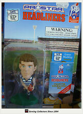 1997 Prostar AFL Headliner Figurine Garry Hocking (Geelong)