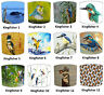 de Kingfisher abat-jour idéal correspond à coussins, Papier peint & couettes