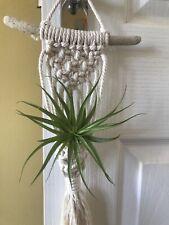 Macrame Air Plant Hanger Holder Nest Handmade