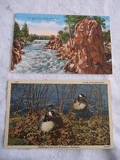 2 VTG IRON MOUNTAIN MICHIGAN UNPOST LINEN postcard LION HEAD ROCK GEESE 1940S