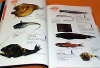 Deep Sea Fish Encyclopedia book japan japanese #0589