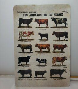 Bull Cow Cattle Breeds Vintage Look Melamine Farmhouse Decor Tray Platter EUC