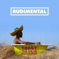 RUDIMENTAL Toast To Our Differences (2019) 13-track CD album NEW/SEALED Rita Ora