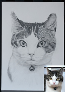 Custom Pet Portrait Personalise Pencil Drawing From Photo Dog Sketch Family Gift