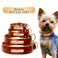 Pet Dog Collar Personalised Pet Nameplate Collar Engraved Name Number XS S M L