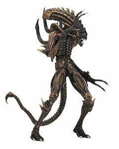 "Aliens Scorpion Alien 7""- Action Figure Series 13 Neca"