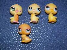 Littlest Pet Shop petshop lot bird oiseau petit oiseau
