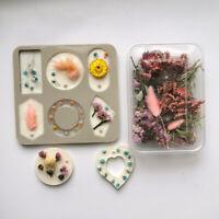 1 Box Getrocknete Blumenpflanze Duftkerze Epoxidharzfüllung DIY Seifen Zubehör
